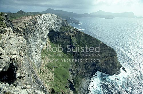 Northwest Bay from St Col Peak. (300m) cliff tops, Campbell Island, NZ Sub Antarctic District, NZ Sub Antarctic Region, New Zealand (NZ) stock photo.