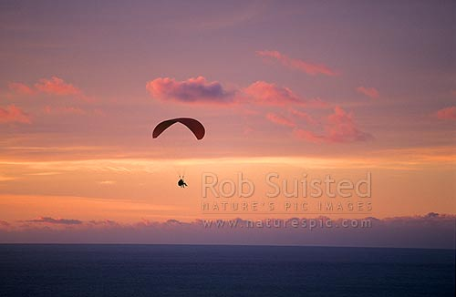 Tandem parapenting at sunset, Paekakariki, Kapiti Coast District, Wellington Region, New Zealand (NZ) stock photo.