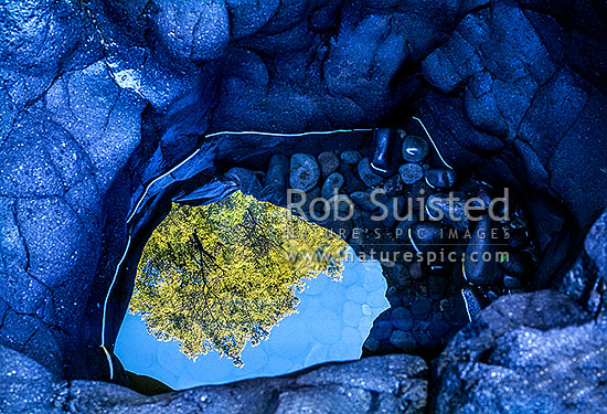 Beech tree reflection in rocky pool next to the Tongariro River, Turangi, Taupo District, Waikato Region, New Zealand (NZ) stock photo.