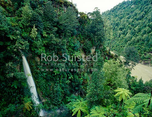 Wanganui River trench - with small waterfall, Whanganui National Park, Wanganui District, Manawatu-Wanganui Region, New Zealand (NZ) stock photo.
