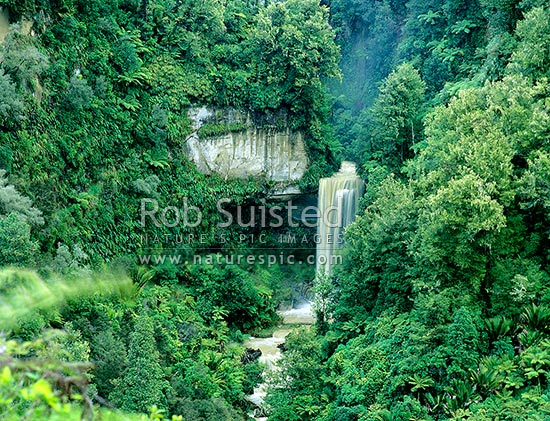 Waterfall in Whanganui National Park; Wanganui River, Whanganui National Park, Wanganui District, Manawatu-Wanganui Region, New Zealand (NZ) stock photo.