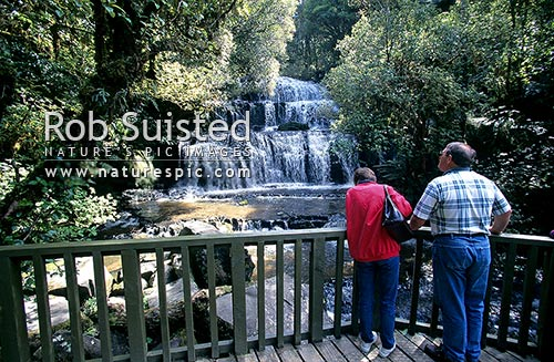 Visitors to Purakaunui Falls, Catlins, Clutha District, Otago Region, New Zealand (NZ) stock photo.