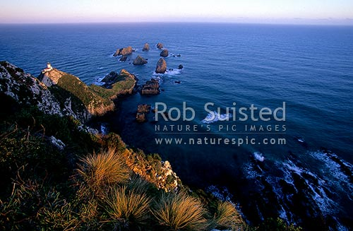 Nuggets Lighthouse at dusk. Nugget point, Catlins. South Otago, Catlins, Clutha District, Otago Region, New Zealand (NZ) stock photo.