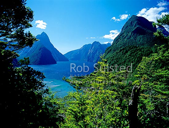 Looking down Milford Sound past Mitre Peak (1693m) left. Fiordland Nat. Park, Milford Sound, Fiordland National Park, Southland District, Southland Region, New Zealand (NZ) stock photo.