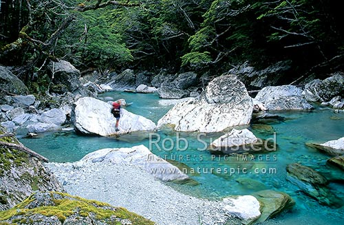 Tramper beside the Routeburn River below Routeburn Flats; Routeburn Great Walk, Mount Aspiring National Park, Queenstown Lakes District, Otago Region, New Zealand (NZ) stock photo.