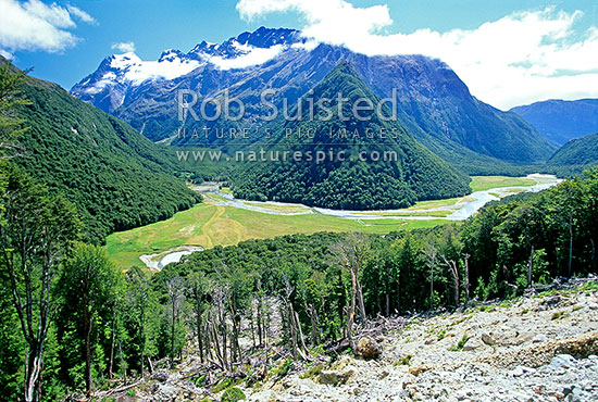 Looking down on the Routeburn River Flats; Routeburn Great Walk track, Mount Aspiring National Park, Queenstown Lakes District, Otago Region, New Zealand (NZ) stock photo.