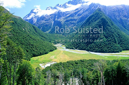 Looking down on the Routeburn River Flats; Routeburn Great Walk track. Mount Aspiring National Park, Mount Aspiring National Park, Queenstown Lakes District, Otago Region, New Zealand (NZ) stock photo.