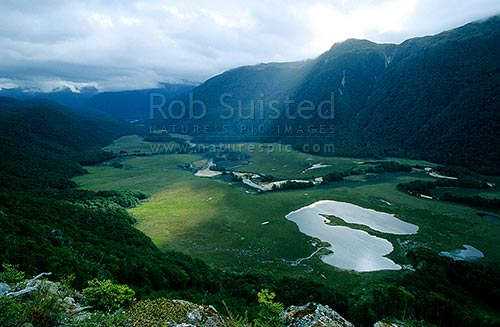 Sunbeam on the Grebe River, winding through typical Fiordland swamp valley towards Lake Manapouri, Fiordland National Park, Southland District, Southland Region, New Zealand (NZ) stock photo.