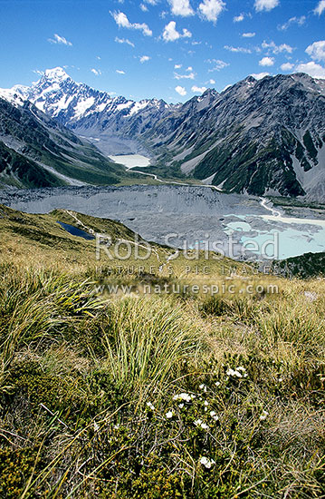 Mount Cook Aoraki (3754m)above Hooker Valley viewed from above Sealy Tarns. Mueller Glacier terminal lake at right, Aoraki / Mount Cook National Park, MacKenzie District, Canterbury Region, New Zealand (NZ) stock photo.
