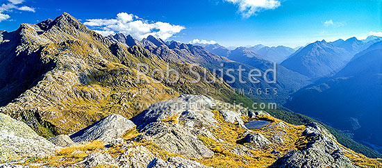 View south from Conical Hill (Routeburn track) up the Hollyford valley. R. track sidles valley above forest (l), Fiordland National Park, Southland District, Southland Region, New Zealand (NZ) stock photo.