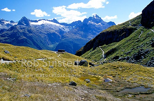Harris Saddle and shelter on the Routeburn Track. Fiordland Darran Mountains behind. Mount (Mt) Aspiring National Park, Mount Aspiring National Park, Queenstown Lakes District, Otago Region, New Zealand (NZ) stock photo.