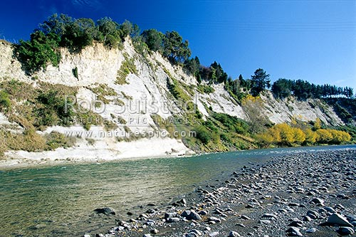Autumn (fall) colours on trees at base of cliffs on the Rangitikei River near Mangaweka. Rocks and stones on river bed. NOTE: Telephone wires visible, Mangaweka, Rangitikei District, Manawatu-Wanganui Region, New Zealand (NZ) stock photo.
