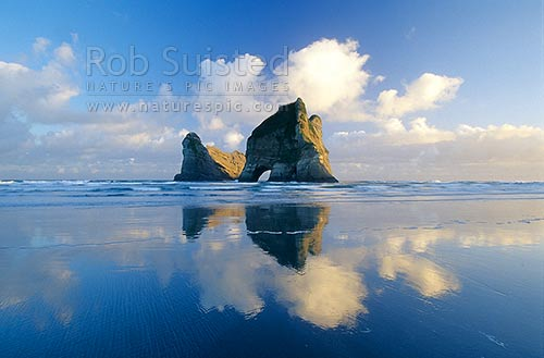 The Archway Islands on Wharariki Beach; Puponga Farm Park. Islands and clouds reflected in wet sand, Farewell Spit, Golden Bay, Tasman District, Tasman Region, New Zealand (NZ) stock photo.