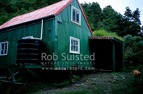 Historic Field Hut (870m a.s.l.), en route to Kime Hut and Mount (Mt) Hector, from Otaki Forks, Tararua Forest Park, Kapiti Coast District, Wellington Region, New Zealand (NZ) stock photo.