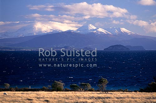 Looking over Lake Taupo to the Volcanic Plateau, Mount (Mt)s Ruapehu, Ngaruhoe and Tongariro, Taupo, Taupo District, Waikato Region, New Zealand (NZ) stock photo.