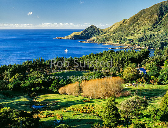 Lottin Point (Wakatiri), East Cape, East Cape, Gisborne District, Gisborne Region, New Zealand (NZ) stock photo.