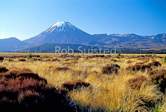 Mount (Mt) Ngauruhoe (2287m) from the Desert Road (State Highway 1), Tongariro National Park, Taupo District, Waikato Region, New Zealand (NZ) stock photo.