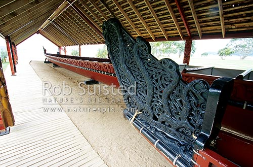 Whare Waka (Canoe house) with 35 metre Waka war canoe on right, with intricate Maori carving detail Waitangi National Reserve, Bay of Islands, Far North District, Northland Region, New Zealand (NZ) stock photo.