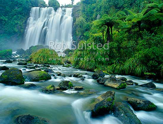 Marokopa Falls, King Country, Waikato, Waitomo, Waitomo District, Waikato Region, New Zealand (NZ) stock photo.