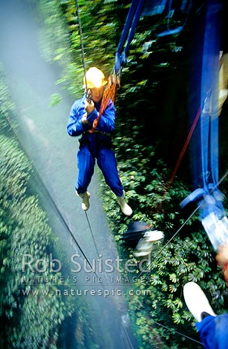 Descending into the misty 'Lost World' cave - 100m abseil and cave tour, Waitomo, Waitomo District, Waikato Region, New Zealand (NZ) stock photo.