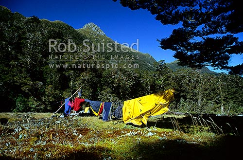 Drying out gear on line, in sun at Swamp Clearing, Fiordland National Park, Southland District, Southland Region, New Zealand (NZ) stock photo.