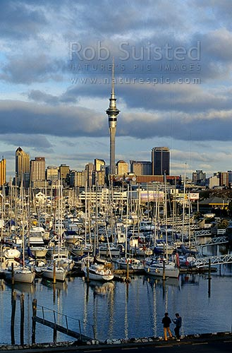 Auckland City skyline and Sky Tower from Westhaven Marina at dusk, Auckland City, Auckland City District, Auckland Region, New Zealand (NZ) stock photo.