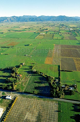 Intensive Agricultural land in the Wairau Valley near