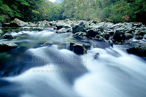 The Clinton River on the Milford Track - the 'finest walk in the world'. Fiordland, Fiordland National Park, Southland District, Southland Region, New Zealand (NZ) stock photo.