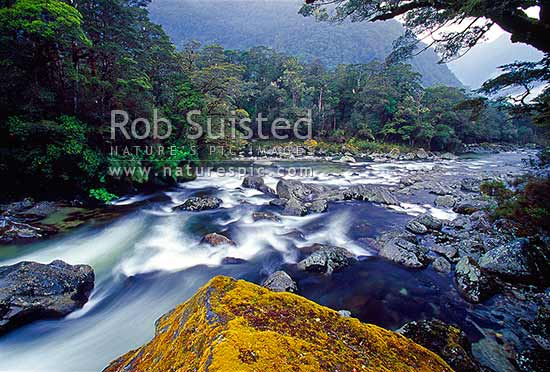 The Clinton River on the Milford Track - the 'finest walk in the world', Fiordland National Park, Southland District, Southland Region, New Zealand (NZ) stock photo.