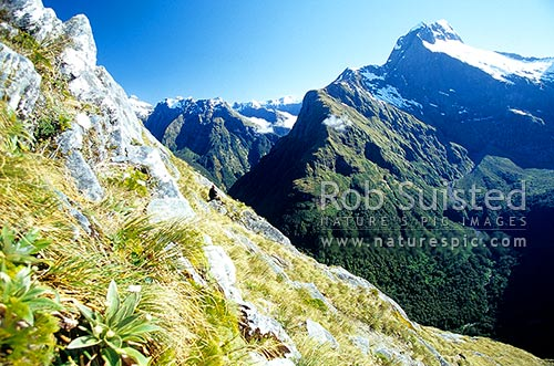 Looking down into the Arthur Valley from above Mackinnon Pass. Milford Track - the 'finest walk in the world', Fiordland National Park, Southland District, Southland Region, New Zealand (NZ) stock photo.