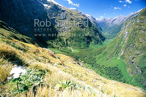 Looking down into Clinton Valley from Mackinnon Pass. Lake Mintaro centre. Milford Track - the 'finest walk in the world', Fiordland National Park, Southland District, Southland Region, New Zealand (NZ) stock photo.