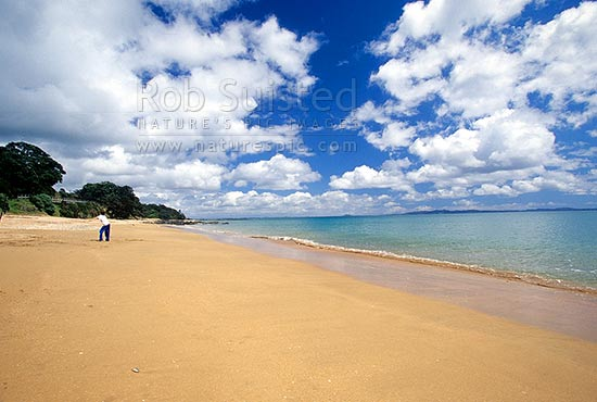 Cable Bay, in Doubtless Bay, Far north, Northland, Far North District, Northland Region, New Zealand (NZ) stock photo.