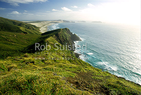 Overlooking Te Werahi Beach and Cape Maria van Dieman from Cape Reinga, Far north, Northland, Far North District, Northland Region, New Zealand (NZ) stock photo.