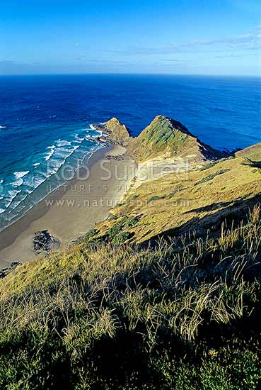 Cape Reinga and Spirits Leap, Far north, Northland, Far North District, Northland Region, New Zealand (NZ) stock photo.