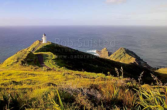 Cape Reinga lighthouse and Spirits Leap, Far north, Northland, Far North District, Northland Region, New Zealand (NZ) stock photo.