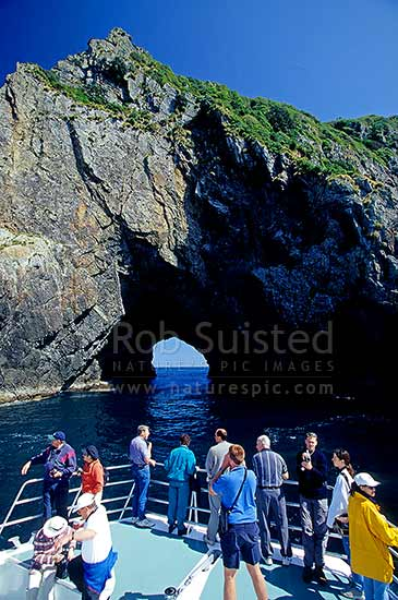 A 'Hole in the Rock' tour after passing through Piercy Island, Bay of Islands, Far North District, Northland Region, New Zealand (NZ) stock photo.