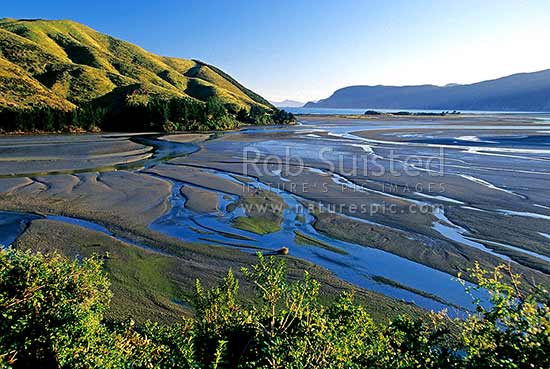 Looking past Pepin Island (left) to Delaware Bay and Whangamoa Head, Nelson, Nelson City District, Nelson Region, New Zealand (NZ) stock photo.