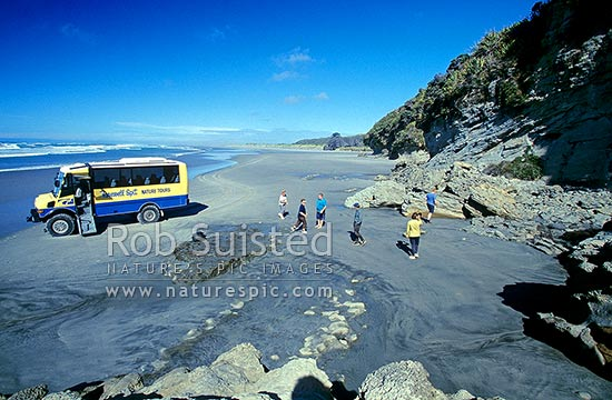 Tour to Fossil Point at the base of Farewell Spit, Farewell Spit, Golden Bay, Tasman District, Tasman Region, New Zealand (NZ) stock photo.