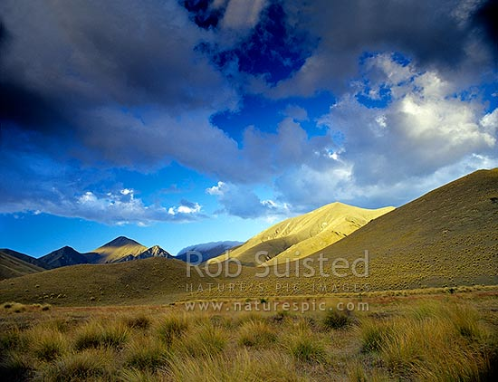 Soft evening light on tussock country - Lindis Pass, Lindis Pass, MacKenzie District, Canterbury Region, New Zealand (NZ) stock photo.