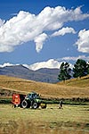 Central Otago haymaking
