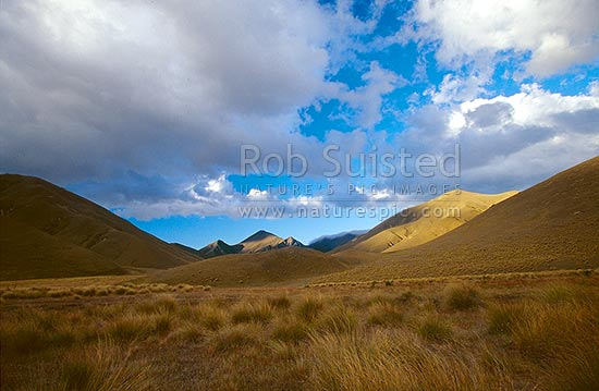 Soft evening light on tussock country - Lindas Pass, Lindis Pass, MacKenzie District, Canterbury Region, New Zealand (NZ) stock photo.