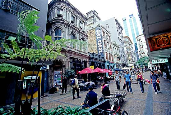 Restaurants In West Auckland Nz