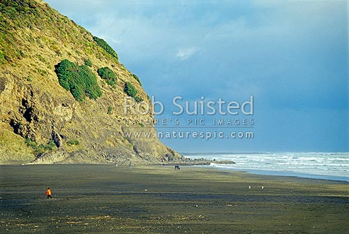 People enjoying Karekare Beach, black sand Auckland west coast beach, Karekare Beach, Waitakere City District, Auckland Region, New Zealand (NZ) stock photo.