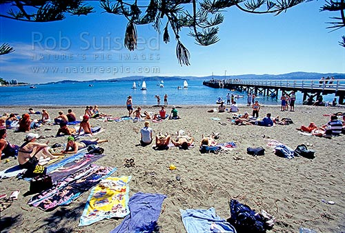 Summer visitors to Days Bay Beach and wharf. Eastern Wellington Harbour, Days Bay, Hutt City District, Wellington Region, New Zealand (NZ) stock photo.