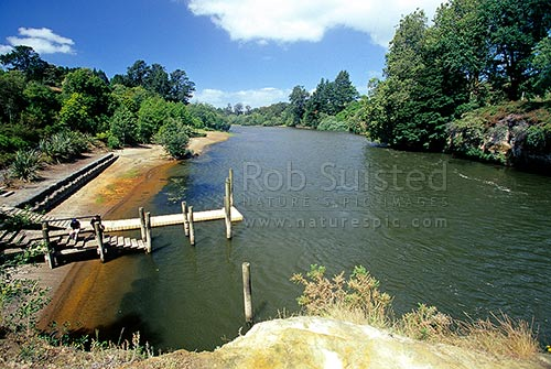 The Waikato River as it flows through Hamilton, Hamilton, Hamilton City District, Waikato Region, New Zealand (NZ) stock photo.