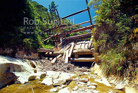 Historic Kauri timber dam in the Kaiarara Valley; Port Fitzroy, Great Barrier Island, Auckland City District, Auckland Region, New Zealand (NZ) stock photo.
