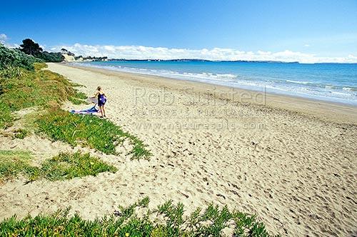 Beaches Near Auckland City