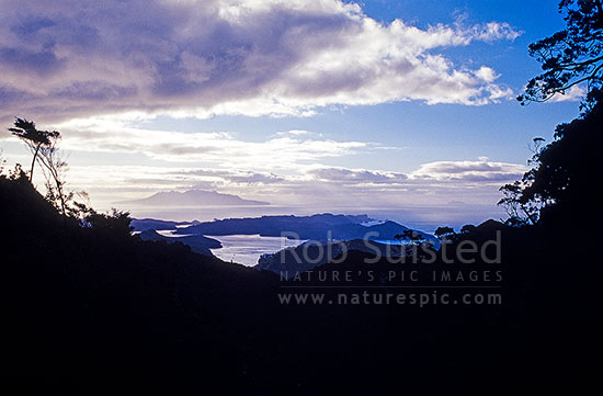 Looking from Mt Hobson (621m) to Port Fitzroy and Little Barrier Island distant. Kaiarara Valley, Great Barrier Island, Auckland City District, Auckland Region, New Zealand (NZ) stock photo.