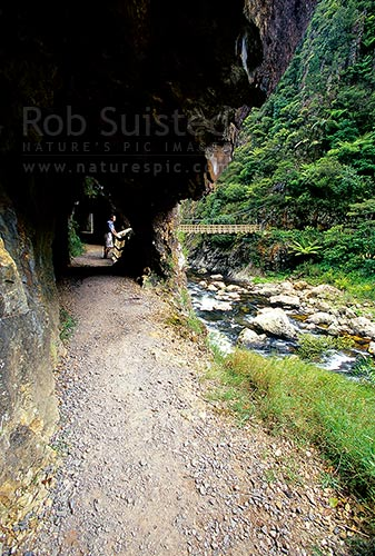 Old gold mining tunnels in the Karangahake Gorge goldfields walkway. Waitawheta River, Waihi, Hauraki District, Waikato Region, New Zealand (NZ) stock photo.
