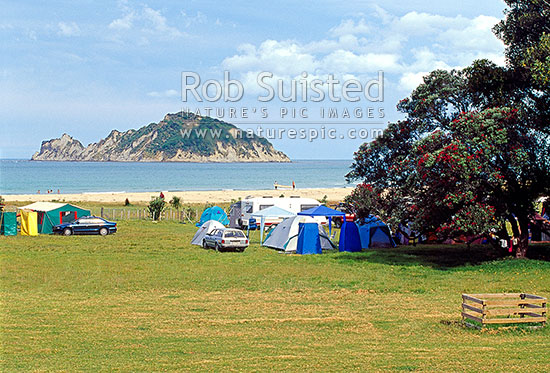 Anaura Bay campsite with Motuoroi Island beyond. Captain Cook's landing site, Anaura Bay, Gisborne District, Gisborne Region, New Zealand (NZ) stock photo.